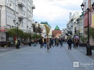 Рекламные вывески поменяют на девяти улицах Нижнего Новгорода