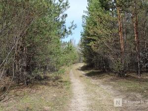 «Бермудские треугольники» Нижегородской области: названы места, где чаще всего пропадают люди