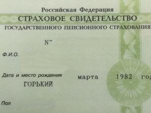 В России отменили «зеленый СНИЛС»