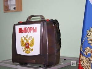 Регистрация на дистанционное голосование по поправкам в конституцию началась в Нижегородской области
