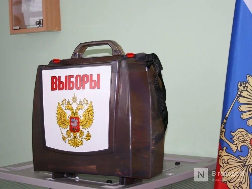 Регистрация на дистанционное голосование по поправкам в конституцию началась в Нижегородской области - фото 1
