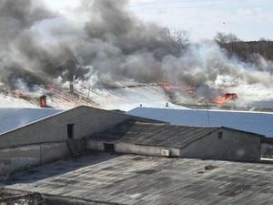 Кожевенный завод загорелся в Богородске