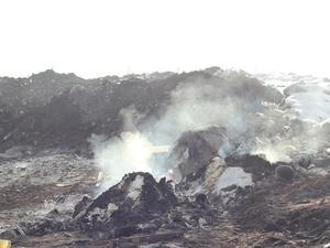 Нижегородскую компанию оштрафовали за незаконное сжигание мусора