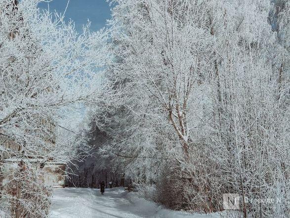 Как Нижний Новгород пережил аномально морозные дни  - фото 5