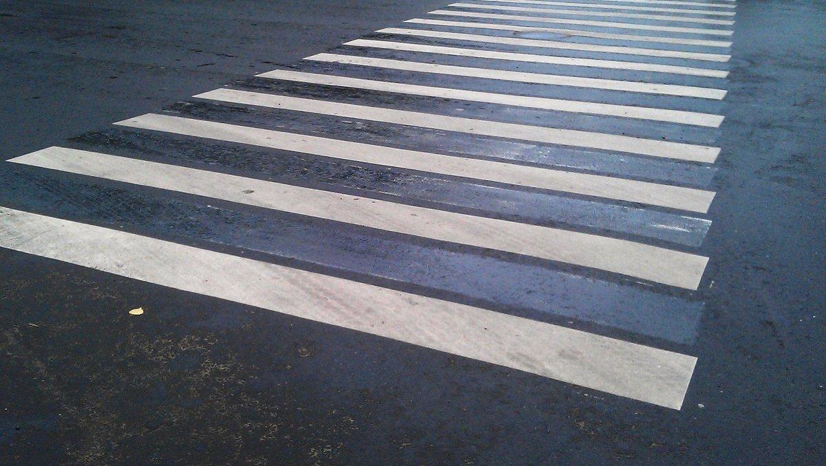 Отца и сына сбил водитель «Нивы» на пешеходном переходе в Сергаче - фото 1