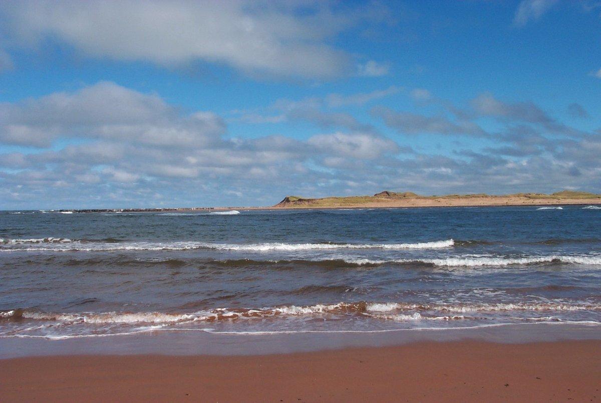 7 опасных болезней, которыми можно заразиться на любом пляже - фото 3