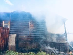 Трое детей и один взрослый погибли на пожаре в Пильнинском районе