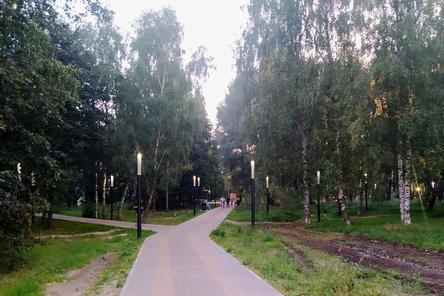 Подрядчик отремонтирует сломанные светильники в нижегородском парке Пушкина