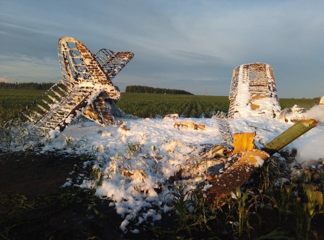 Стали известны причины крушения самолета Ан-2 в Большеболдинском районе - фото 1
