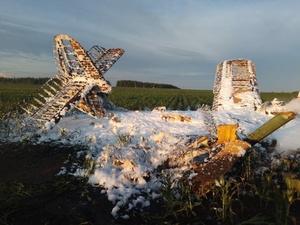Компанию-владельца разбившегося Ан-2 в Большеболдинском районе оштрафовали на 410 тысяч рублей
