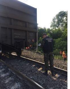 По факту схода с рельсов вагонов с углем в Бутурлинском районе возбуждено уголовное дело