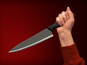 Нижегородка зарезала циркового антрепренера за домогательства
