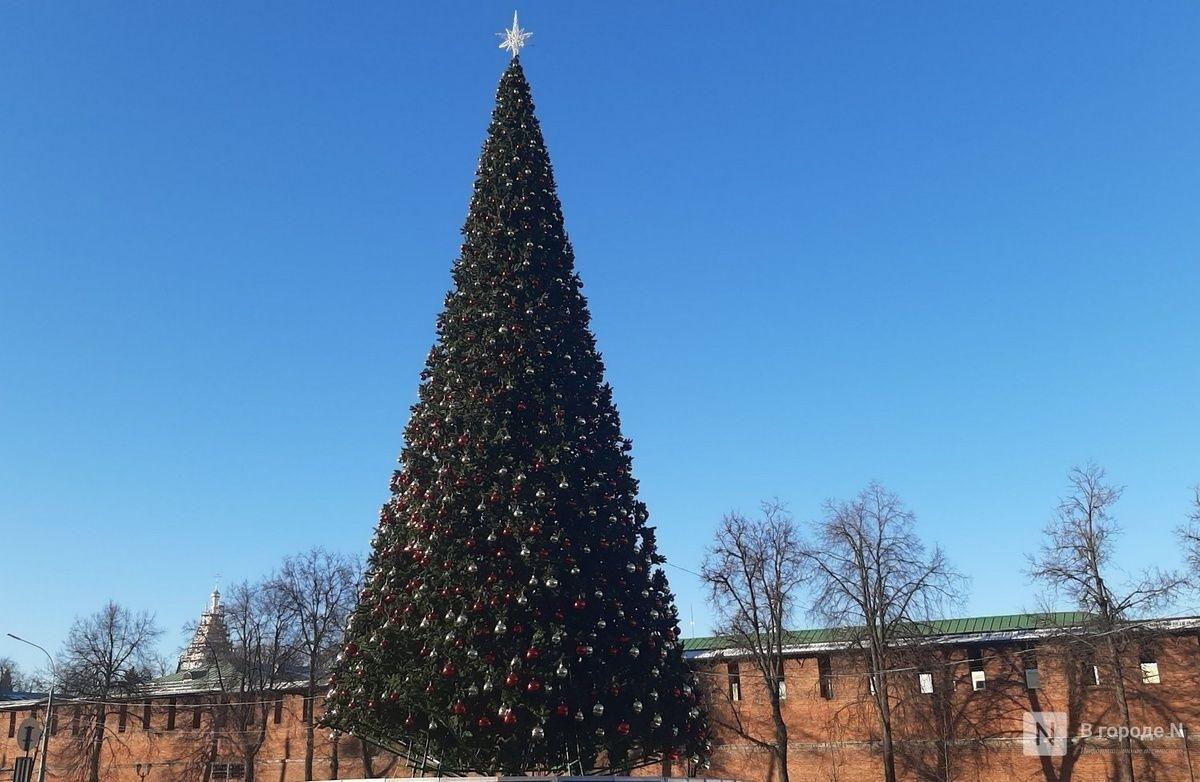 Главную новогоднюю елку в Нижнем Новгороде демонтируют до конца недели - фото 1