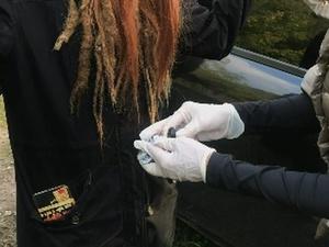 Девушку с наркотиками задержали полицейские в нижегородском лесу