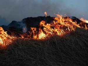 Более 16 тонн взрывоопасных веществ обезвредили нижегородские Росгвардейцы