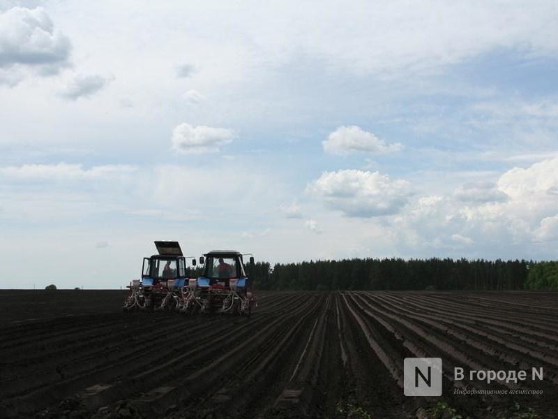 Лысковский фермер незаконно потратил бюджетные средства