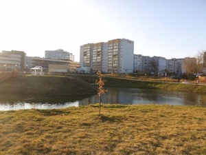 Благоустройство Лукерьинского пруда в Кстове выполнено с нарушениями