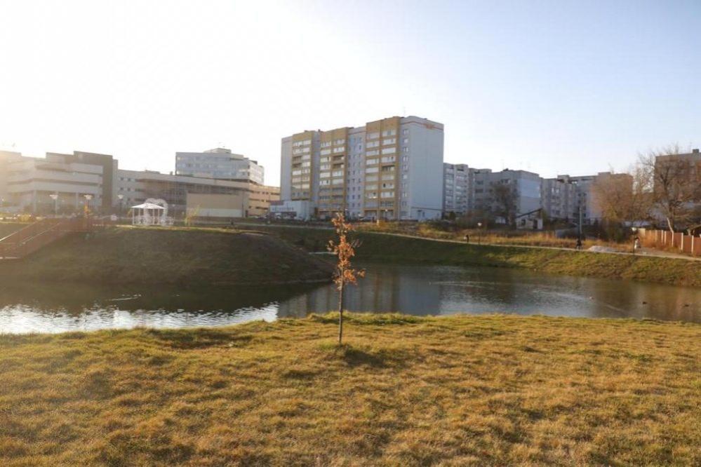 Благоустройство Лукерьинского пруда в Кстове выполнено с нарушениями - фото 1