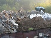 Суд обязал администрацию Дзержинска ликвидировать нелегальную свалку под Пырой