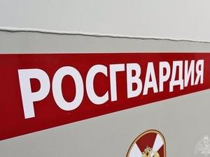 Нижегородские росгвардейцы задержали похитителей алкоголя