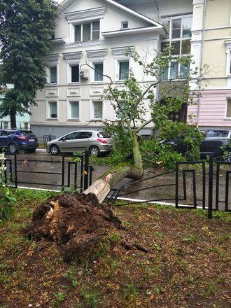 Машины завалило деревьями после урагана в Нижегородской области - фото 5