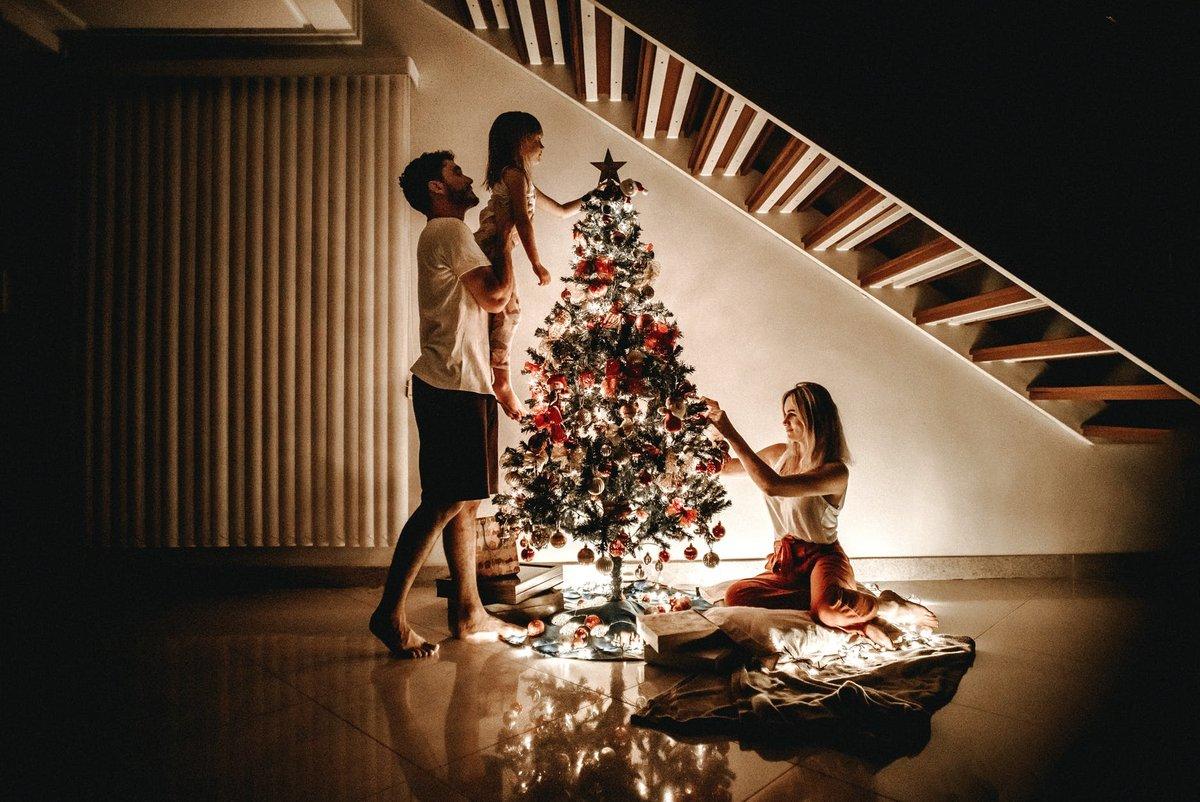 Искусственная или живая: в Роскачестве рассказали, как выбрать елку к Новому году - фото 2