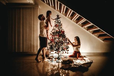 Искусственная или живая: в Роскачестве рассказали, как выбрать елку к Новому году