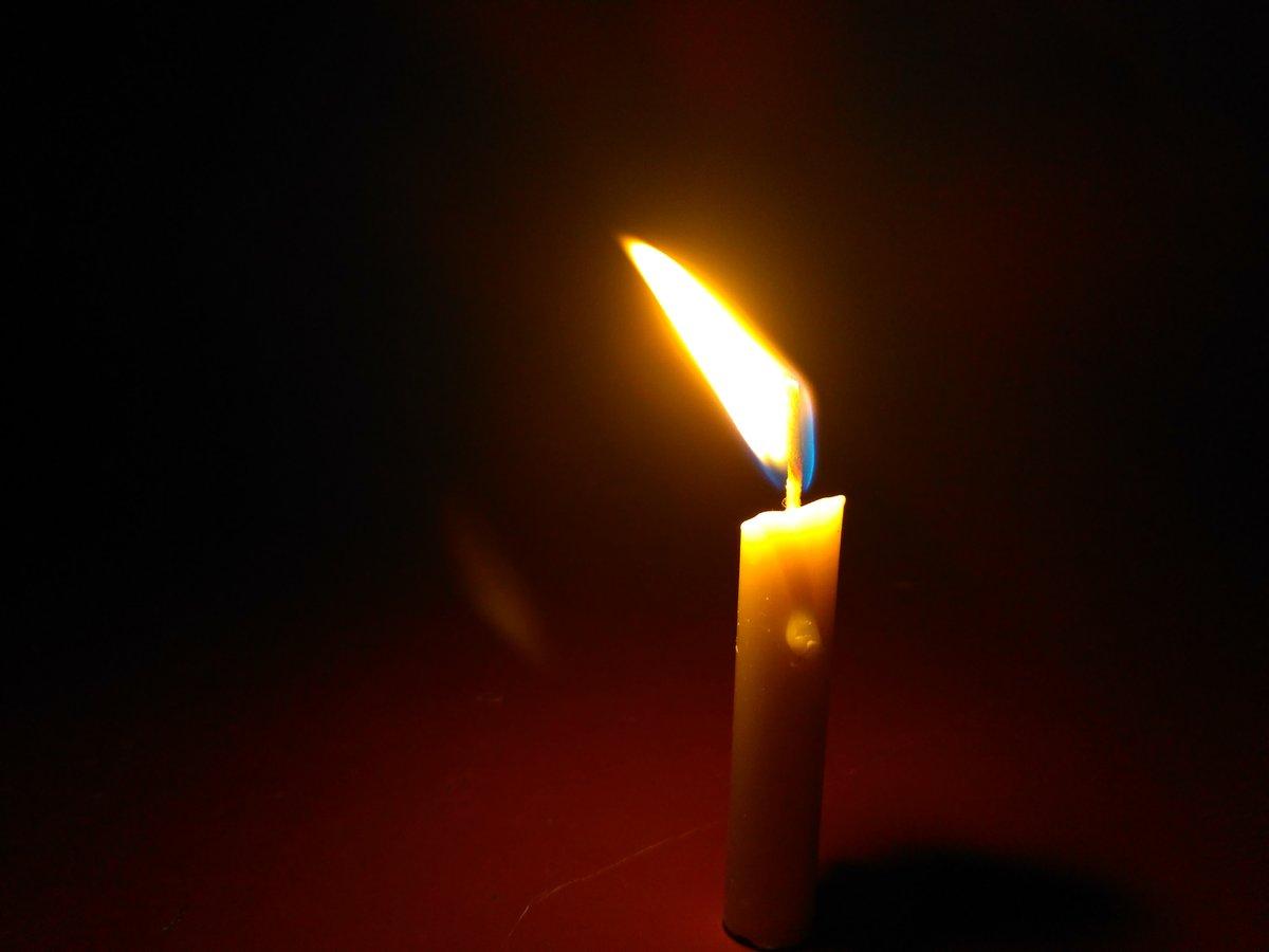 Осветим дорогу всем пропавшим: нижегородские поисковики запускают акцию памяти - фото 1