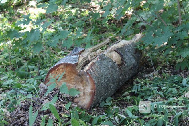 Конфликт на костях: за и против строительства храма на улице Родионова - фото 50