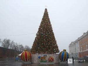 Главную новогоднюю елку нарядили на площади Минина и Пожарского